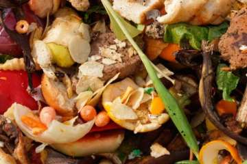 Food Rationing: The Only Solution To Food Wastage?