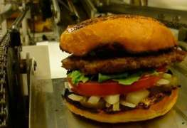 Fast-Food Workers Could Face Robot 'Armageddon'