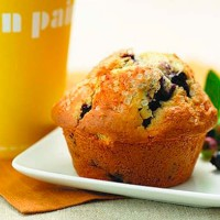 Au Bon Pain Blueberry Muffin