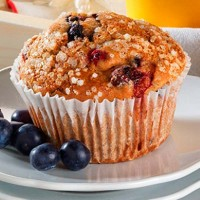 Au Bon Pain Low Fat Berry Muffin with Whole Grains